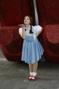 Dorothy från Trollkarlen från Oz hantverk