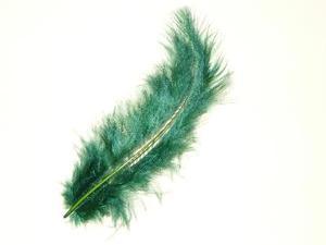 Vad är ett träd med fjäder-liknande blad?