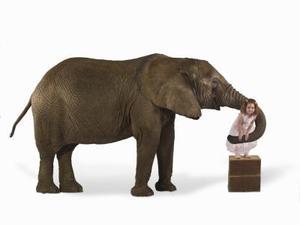 Hur man gör en elefant näsa
