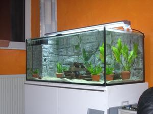 Hur man gör en akvarium avdelare