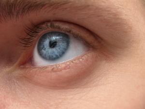 Insekter & parasiter som lever på det mänskliga ögat