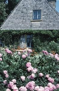 Engelska Cottage Garden planer