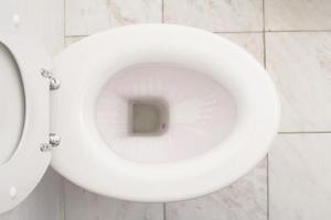 Vilken typ av färg ska du använda att måla en toalettstolen?