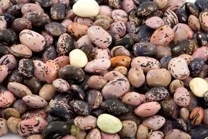 Hur ånga torkade bönor