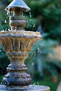 Hur bli av grönt slem i vatten fontäner