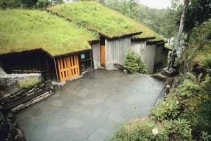 Hur man installerar en gräs tak