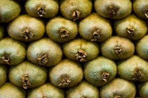 Hur man odlar kiwifrukt från frön