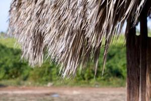 Hur man bygger en liten hydda med bambu