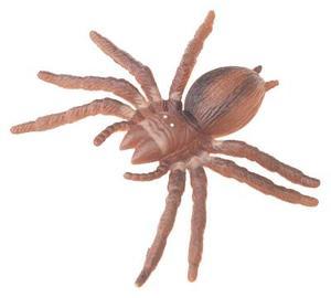 Stor gruppaktivitet på spindlar för förskolebarn
