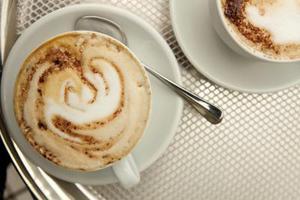 Instruktioner för Mr kaffe espresso maker ecm250