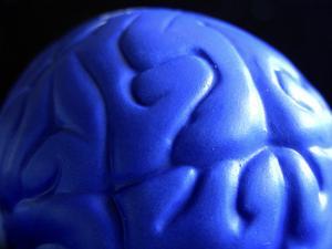 Hur länge kan en mänsklig hjärna gå utan syre?