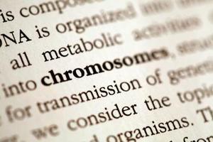 Manliga & kvinnliga kromosom typer