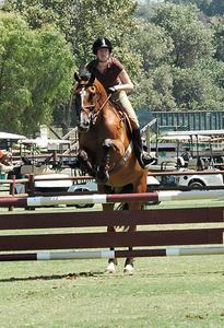 Ett enkelt sätt att bygga häst hoppa standarder av trä