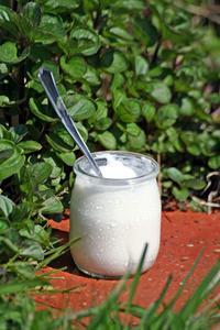 Vad är fördelarna med hemmagjord yoghurt?