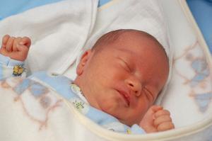 Topp 10 medicinska skolor för neonatal omvårdnad