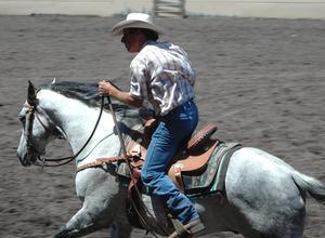 Hock Inflammation i kvartalet häst