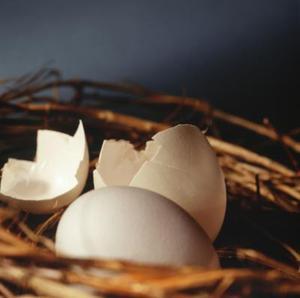 Hur man bygger ägg inkubatorer