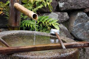 Dammen & vattenfall idéer för trädgården