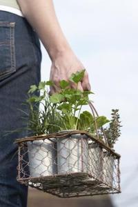 Hur man bygger en vertikal grönsaksland