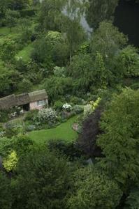 Cottage Garden sommarblommor