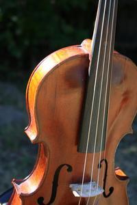 Hur platsen en falsk antik fiol