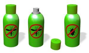 Ekologisk rengöring Tips för att bli av med vägglöss