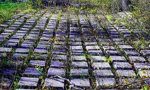 Hur man gör en konkret stenen gångväg