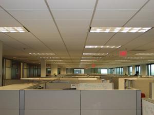 Vad är innebörden av mångfald på arbetsplatsen?