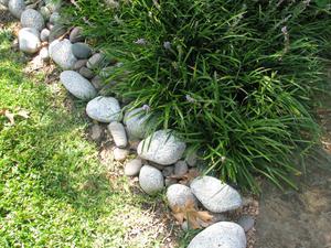 Landskapsarkitektur med stenar & växter