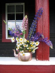 Hur du utformar din slutna veranda