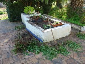 Bäst köper för upphöjd trädgård sängar