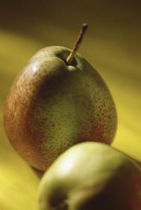 Kan jag sprida päronträd från lövträ sticklingar?