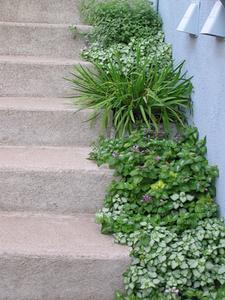 DIY: Hur man liggande utomhus steg & trappor