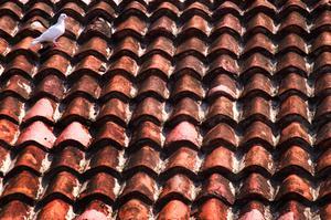 Hur att reparera sprucken betong tak kakel