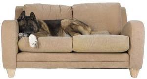 Hur man restuff en soffa