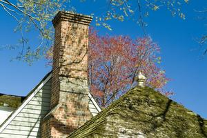 Vad ska jag använda döda mossa på mitt tak?