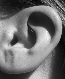 Hur ser jag ut för spänning Hoop Örhängen till långsamt Pierce öron utan någon smärta?