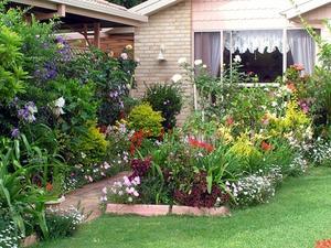 Liten bakgård trädgård planer