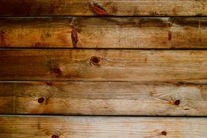 Hur kan jag bli av loppor i huset med trägolv?