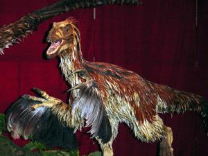Dinosaurie fossila Kid fakta