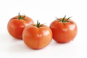 Hur man odlar hydroponiska tomater hemma