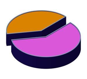 Cirkeldiagram word