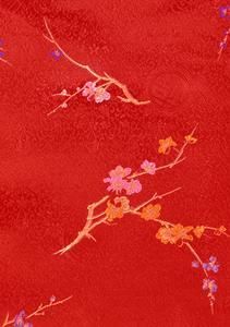 Kinesiska Presenttips Wrap