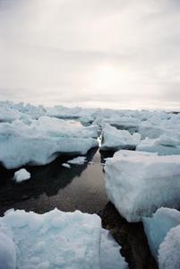 Effekterna av global uppvärmning på business