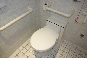 Handikapp toalett förordningar
