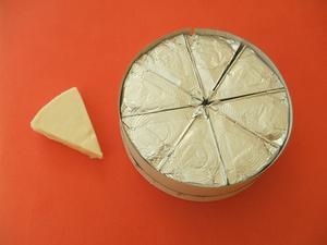 Hemgjord ost mögel
