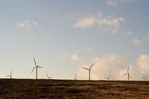 Hur man använder en bil generator för en vindkraftgenerator