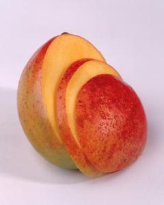 Hur mycket vatten behöver unga mangoträd?