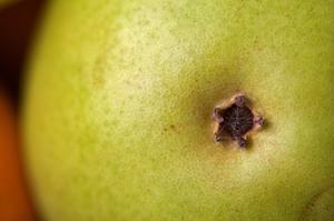 Recept på marmelad med päron-ingefära