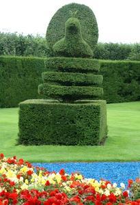 Hur man gör en flätade Topiary